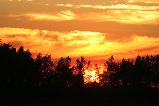 Wavecrest Bed and Breakfast  on Pelee Island: one of many sunset pics from Wavecrest
