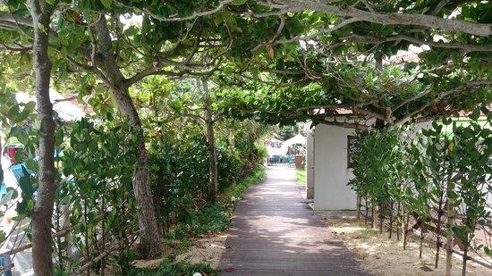 رينيسانس ريزورت أوكيناوا: ビーチとプールの間の道