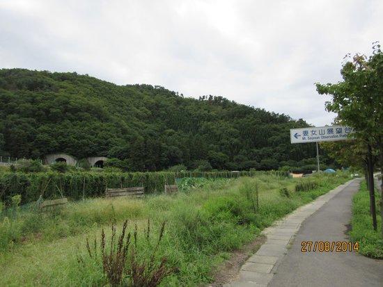 妻女山が見えてきた - 長野市、...