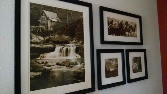 La Quinta Inn & Suites Denver Boulder - Louisville : Beautiful artwork!