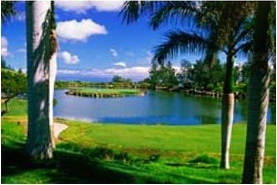 Big Island Country Club : 17th Hole Island Green
