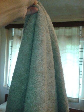 Riverwoods: bath towels that look like floor washing cloth