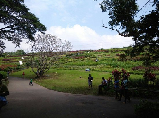 La Mesa Eco Park: View from the picnic grounds area to the dam