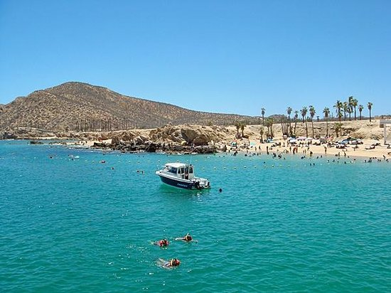 Cabo Escape: Snorkeling Area