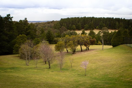 Bilpin Resort : View from cabin