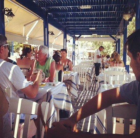 Syrtaki Restaurant: Il locale, molto spartano.