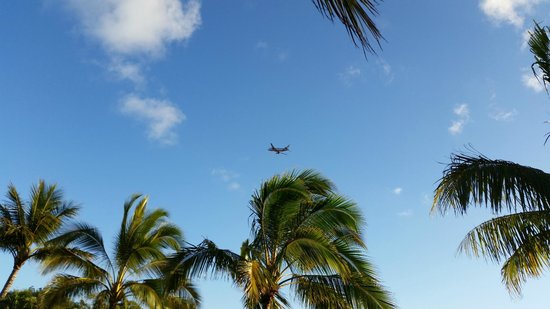 Illawong Beach Resort: Planes - just lucky it's not a real busy day...