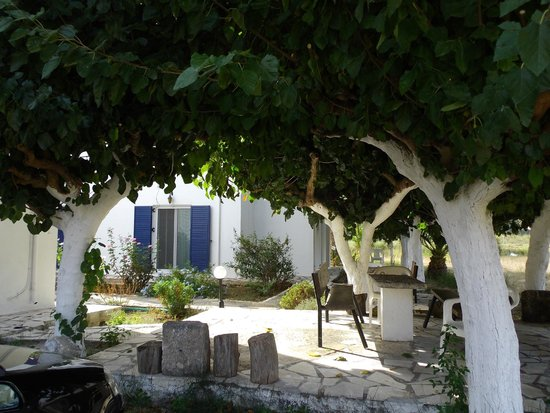 Kalivaki Studios Hotel : Jardin