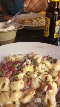 The Grapes Wines Bar: Tortellini with mushroom and bacon sauce & Penne with Cheese Sauce