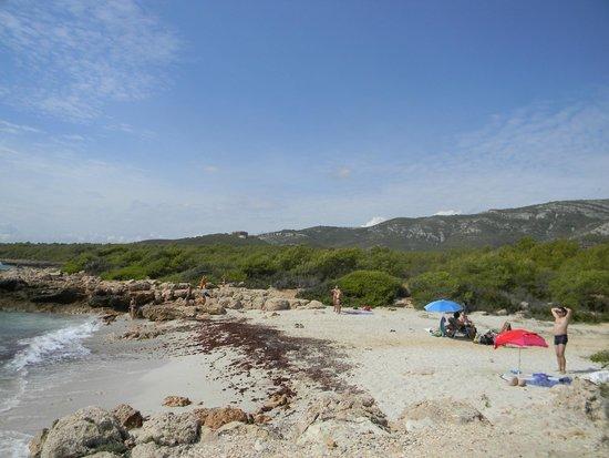 Ribamar Camping y Bungalows : Sandy beach