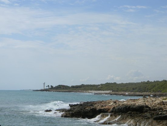 Ribamar Camping y Bungalows : View of the coast