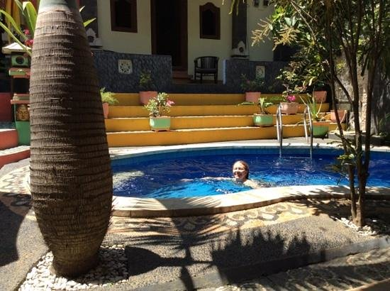 Kubu Pilatus Inn: Delicious plunge pool after a hot day