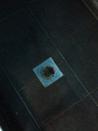 Alexander Villas: Rusty and unhygienic drain in shower...