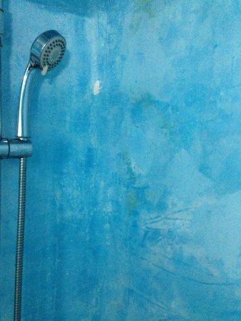 Alexander Villas: Run down and unhygienic bathroom with flaky paint...