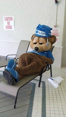 Travelodge Ottawa East : Sleepy Bear relaxing at the Pool!