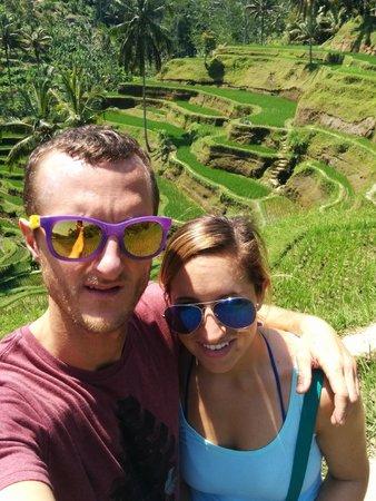 Bali Vacation Driver - Day Tours: Rice paddies near Ubud