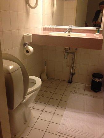 Falcon Plaza Hotel: Bathroom