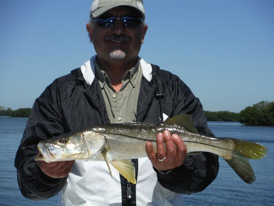 Sheepshead Fishing At The Docks Picture Of Tampa Flats