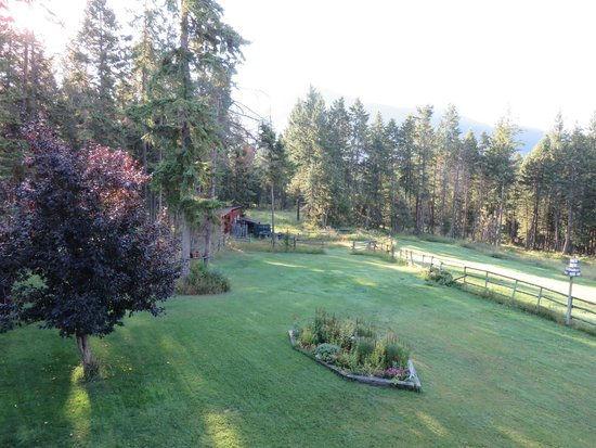 Kicking Horse Canyon B&B : View from our balcony