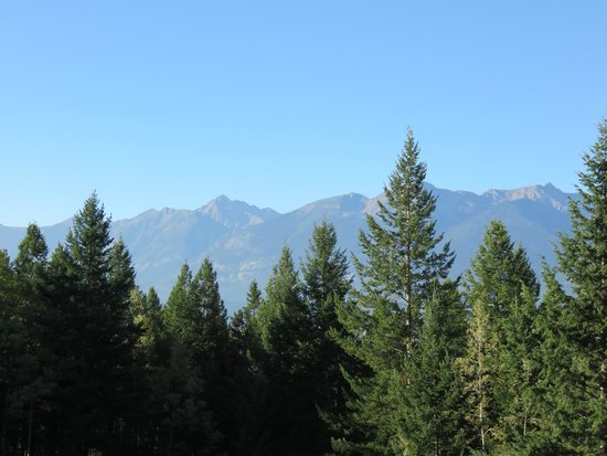 Kicking Horse Canyon B&B : View from our room