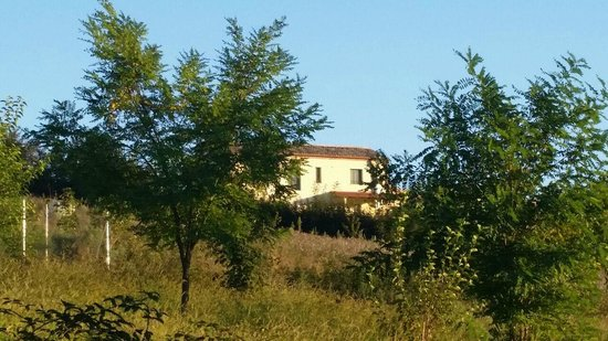 Montemarciano, Italia: Vista posterior