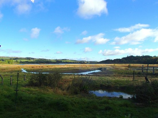 Lochwinnoch, UK: Lovely view of the Aird Meadow from our visitor centre
