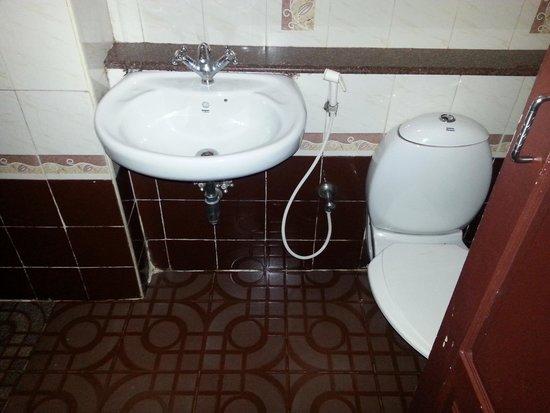 Munnar Castle: Toilet