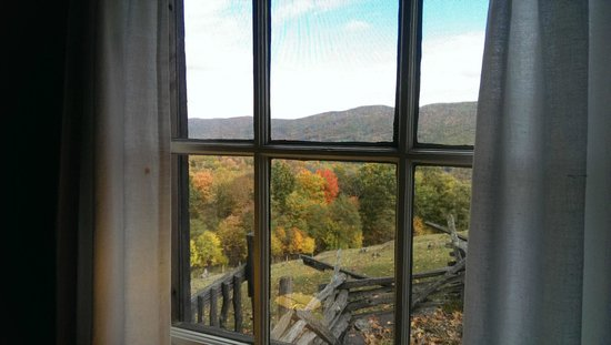 Laurel Point Retreat: View from inside the Bird House