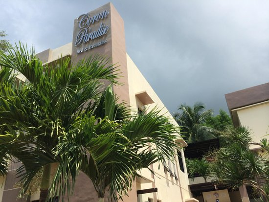 Coron Paradise Bed & Breakfast : Aufgangs Ansicht
