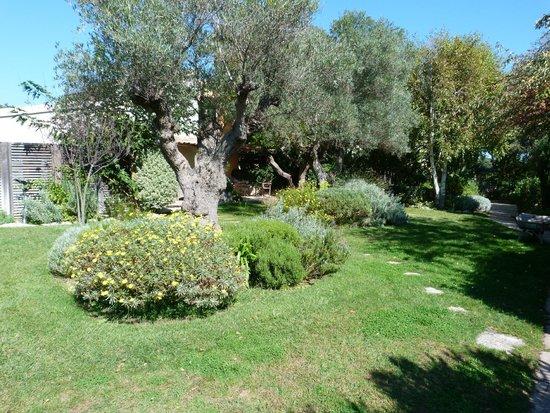 A Cheda: Jardin devant une partie des chambres