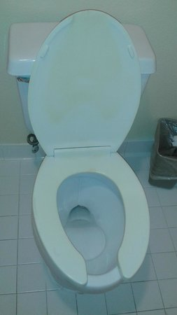 Canada Drive Hotel and Suites : Disgusting Toilet with yellow stains