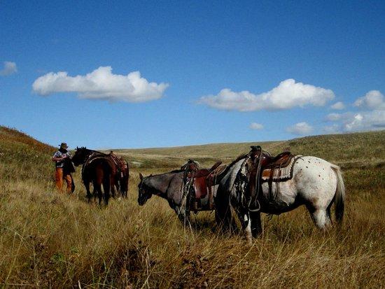 Rangeview Ranch