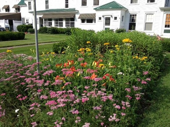 Greenwood Manor Inn: AUGUST