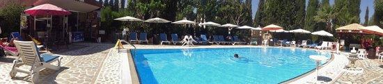 Apollonia Holiday Apartments: pool area