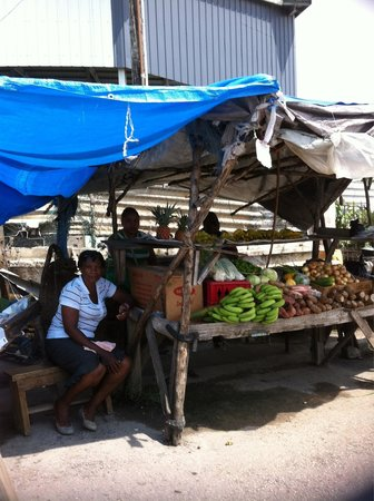 Antsman Tour Jamaica: Antsman is great.