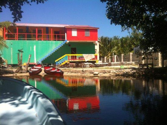 Dirty Mcnasty's Hostel : Back of hostel