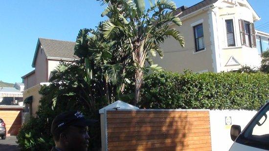 Carmichael Guesthouse: out side