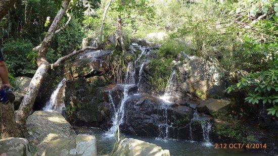 Yanoda Rainforest Yihao Resort: Tropical rainforest
