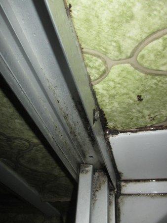 Moisissures dans la douche photo de hotel gambetta - Comment enlever la moisissure dans la douche ...