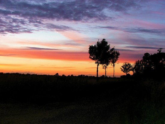 Boundary Farm Bed & Breakfast: Sunset viewed from the lane