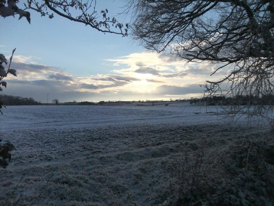 Boundary Farm Bed & Breakfast: A winter view