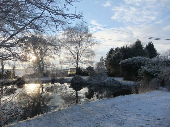 Boundary Farm Bed & Breakfast: The garden in winter