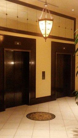Renaissance Tampa International Plaza Hotel: Elevator