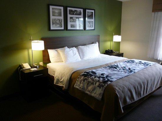 Sleep Inn & Suites Smithfield: King suite