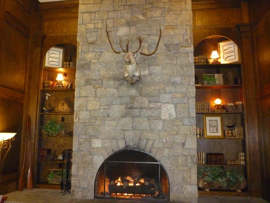 Comfort Suites: Fireplace