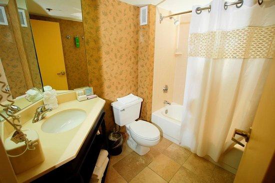 Hampton Inn I-75 Lexington/Hamburg Area: Guest bathroom