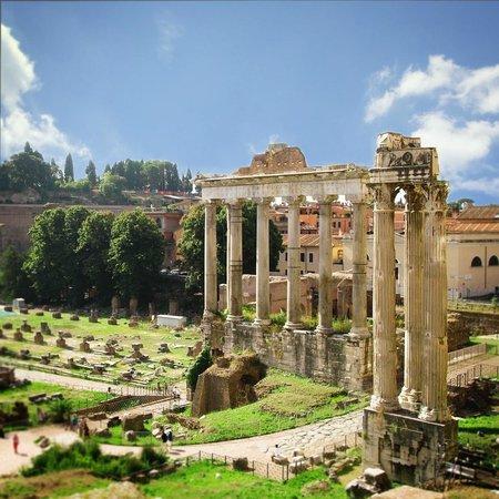 Roma Experience Tours: Palatine Hill