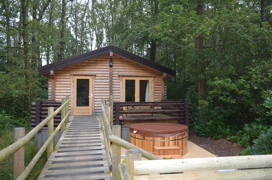 Alpine Grove Log Cabins: cabin from front