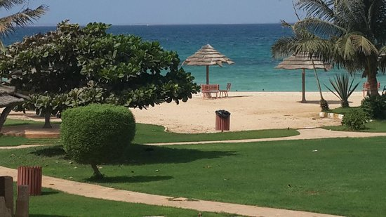 Farasan Coral Resort: Close up of beach from dinning room balcony