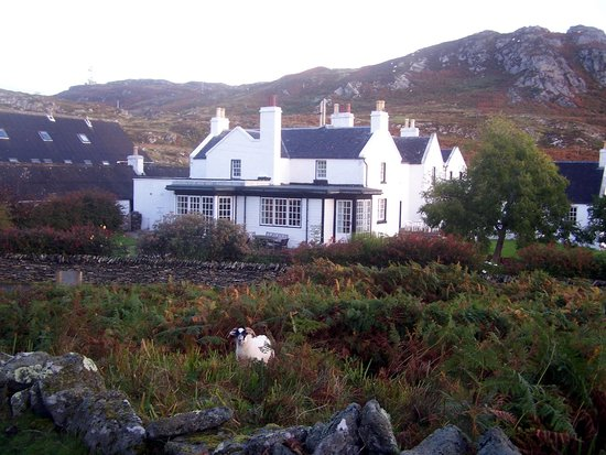 """The Colonsay: The Hotel with local """"wildlife"""" in the foreground."""
